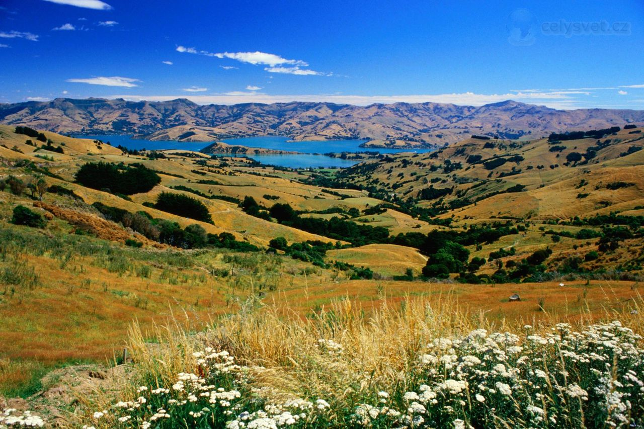 canterbury of new zealand: