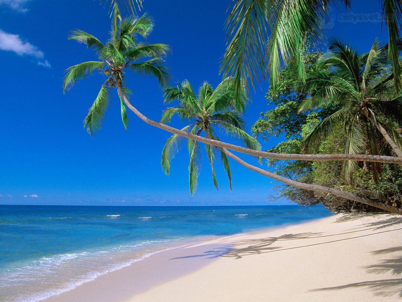Kadavu Island Fiji  City new picture : Kadavu Island, Fidži / Kadavu Island, Fiji