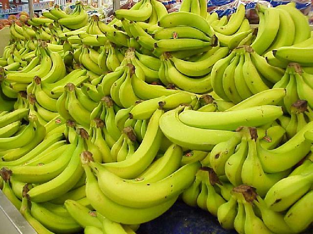 http://www.celysvet.cz/novinky/foto/jakto--ze-banany-a-nekdy-take-pomerance-a-mandarinky-nemaji-semena-1.jpg
