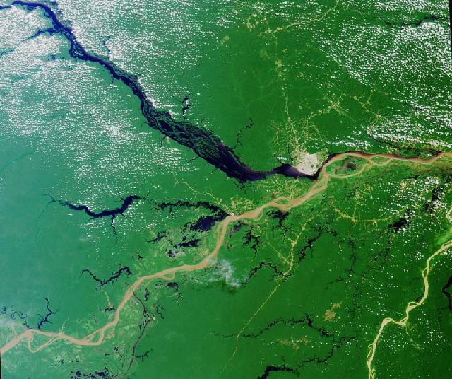 http://www.celysvet.cz/novinky/foto/rekordy-prirody-amazonka-2.jpg
