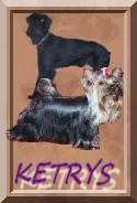 Chovatelska stanice psů: KETRYS